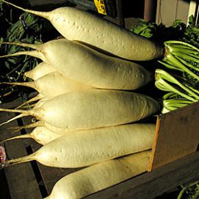 Полезные свойства дайкона:овощи на огороде