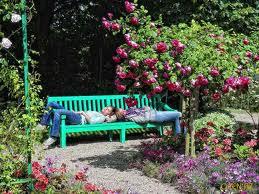 Секреты садоводов-живописца