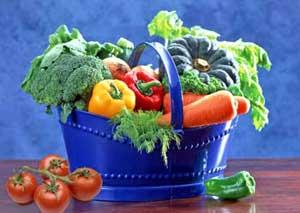 Условия жизни растений