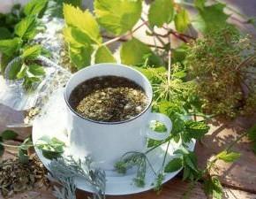 Как отличить старый чай от свежего?