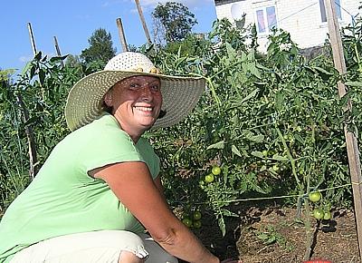 «Полосатый» огород по принципу органического земледелия