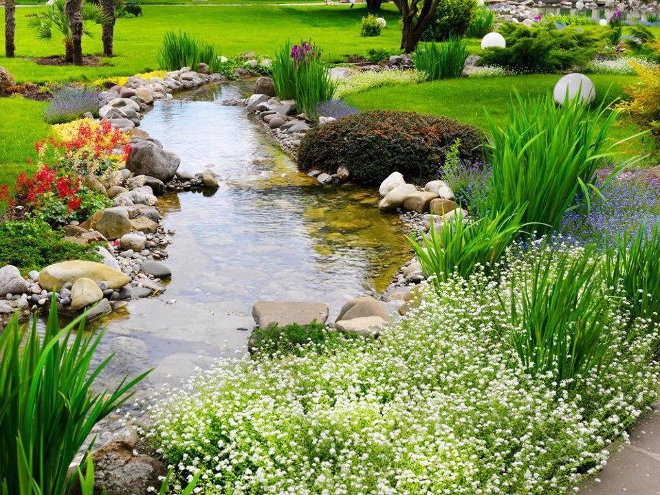 Как защитить, декоративные растения ,от болезней и ,вредителей