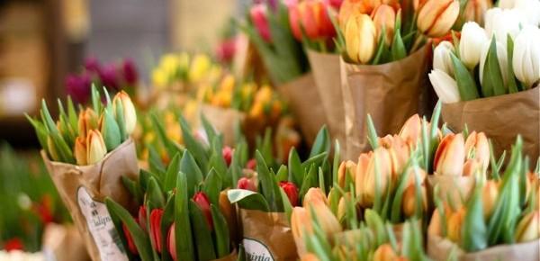 Как сохранить свежесть срезанных цветов