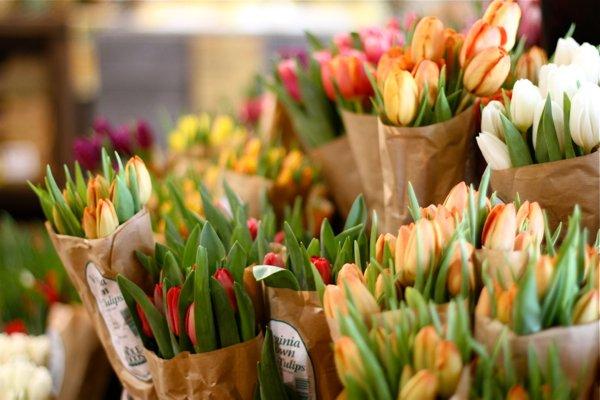 Как сохранить ,свежесть ,срезанных цветов