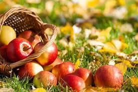 Яблочный Спас 19 августа 2018: что можно и нельзя делать в праздник