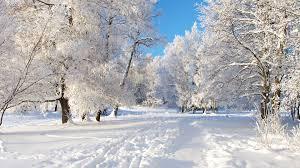 Какой будет зима 2015-2016 года в Украине. Прогнозы синоптиков
