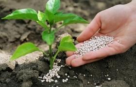 Почему в Украине много нелегальных удобрений?