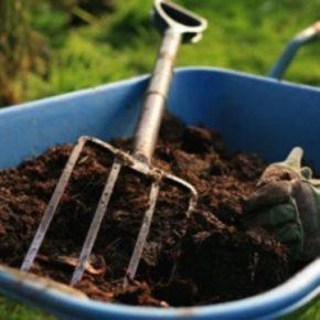 Несколько советов огородникам по выбору органических удобрений