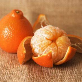 Мандарин - описание, фото, полезные свойства и противопоказания фрукта, состав, калорийность