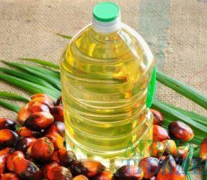 Украина рекордно импортирует пальмовое масло