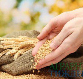 УЗА предлагает «прожаривать» пшеницу на мукомольных предприятиях Индонезии