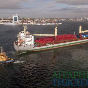 За 11 месяцев 2018 года объем перевалки грузов украинскими портами на 736 тыс. тонн больше, чем в 2017 году