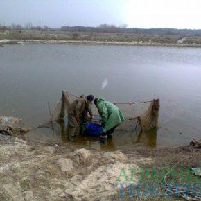 Правительство одобрило законопроект относительно специального использования объектов животного мира на рыбохозяйственных водных объектах