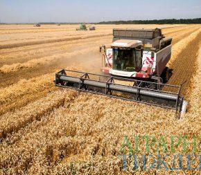 Украиной собрано рекордных 70 миллионов тонн зерна