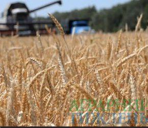 Аграриями уже намолочено 69,3 млн тонн нового урожая-2018