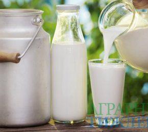 Мониторинг цен на молоко за ноябрь
