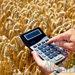 Кабмин нарушил норму Бюджетного кодекса о выплате аграриям 1% аграрного ВВП