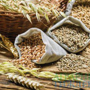 На украинском рынке зерна и продуктов переработки ситуация стабильная