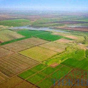 Земельная реформа в Украине должна быть демократической и ориентированной на общину - ФАО