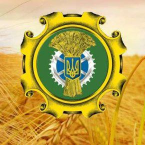 Руководство Минагрополитики провело серию встреч с аграрными министрами стран Европы