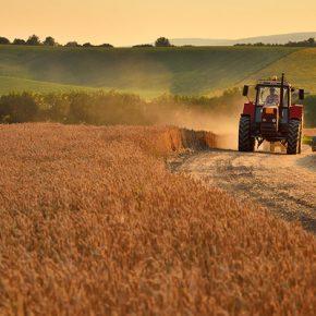 Запорожский облсовет присоединилась к обращению о продлении земельного моратория