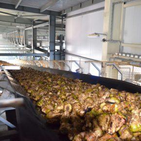Единственный в КЧР сахарный завод планирует удвоить производительность