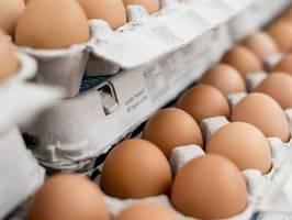 За неделю в Днепре яйца подорожавшего на 0,7%