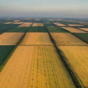 1 января 2019 года вступило в силу общенациональная оценка земель за пределами населенных пунктов