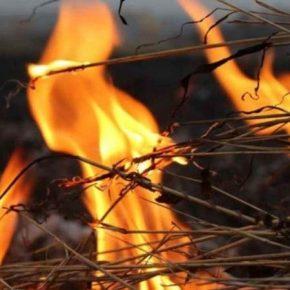 Фермеры объяснили, почему, несмотря на запрет, продолжают сжигать стерню на полях