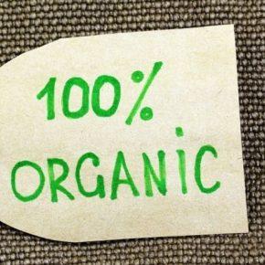 Названы 6 ключевых нововведений закона об органической продукции