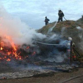В Одесской области огонь уничтожил 700 тонн сена