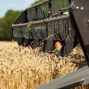 Аграрии Винницкой области превзошли прошлогодний показатель валового сбора зерна