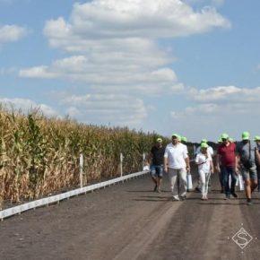 LNZ Hub открывает новые возможности в семеноводстве и защите культур — аграрии