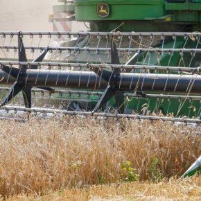 На Львовщине намолочено более миллиона тонн зерна