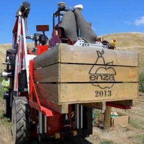 Роботов привлекут для уборки урожая яблок в США