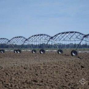 На Запорожье фактически орошается лишь 22% поливных земель