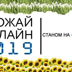 Названы регионы с высокой урожайностью гречихи в Украине — Урожай Онлайн 2019