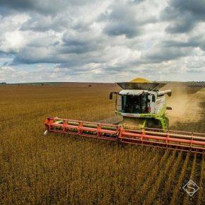 В Украине собрано половину урожая сои