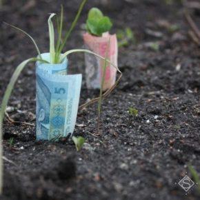 Альфа-Банк Украина стал финансовым партнером компании UKRAVIT