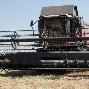 На Прикарпатье завершена уборка ранних зерновых и зернобобовых культур