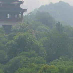 Китай на 43% сократит производство глифосата
