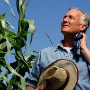 Bayer представит СЗР и семян кукурузы и рапса бренда Dekalb