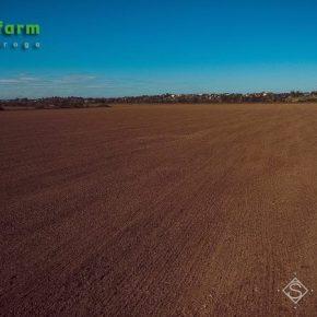 На полях большинства областей царит засуха — Метео Фарм