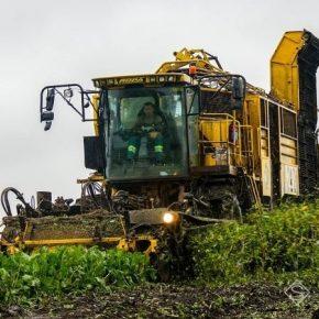Западный Буг выводит в поля технику для уборки сахарной свеклы