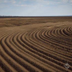 Против рынка земли выступило 73% опрошенных украинцев