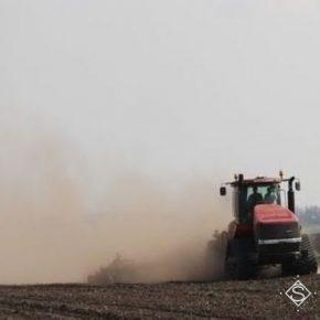Засуха летом сказалась на посевной озимых осенью