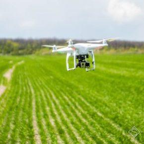 Отечественный рынок дронов оценивается в около 1 миллион долларов ежемесячно