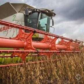 На Сумщине собрано более 2 млн тонн зерна