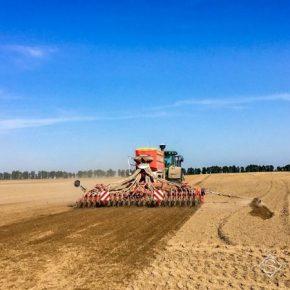 Озимой пшеницей осталось засеять менее четверти площадей