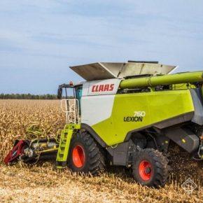 Средняя урожайность кукурузы в Украине превысило 6 т/га